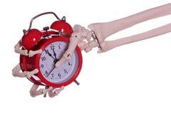 Χέρι σκελετών που κρατά το κόκκινο ξυπνητήρι Στοκ φωτογραφίες με δικαίωμα ελεύθερης χρήσης
