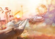 Χέρι στη ρομαντική άποψη φύσης του λουλουδιού και του ηλιοβασιλέματος χλόης για την κοιλάδα Στοκ φωτογραφία με δικαίωμα ελεύθερης χρήσης