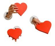 χέρι συλλογής που απομ&omicro Στοκ φωτογραφία με δικαίωμα ελεύθερης χρήσης