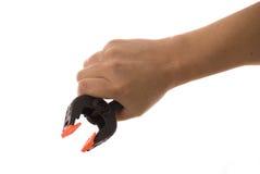χέρι συνδετήρων Στοκ φωτογραφία με δικαίωμα ελεύθερης χρήσης