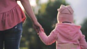 Χέρι της κόρης εκμετάλλευσης Mum που πηγαίνει πέρα από το φωτεινό ήλιο Backlight χλόης που λάμπει στην οικογένεια στον τομέα πικρ απόθεμα βίντεο