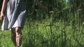 Χέρι της πηγαίνοντας νέας γυναίκας σχετικά με την ψηλή χλόη απόθεμα βίντεο