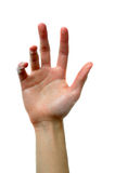 χέρι υγρό στοκ φωτογραφίες με δικαίωμα ελεύθερης χρήσης