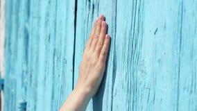 Χέρι φωτογραφικών διαφανειών γυναικών ενάντια στην μπλε-χρωματισμένη ξύλινη πόρτα σε σε αργή κίνηση Θηλυκή επιφάνεια αφής χεριών  φιλμ μικρού μήκους