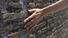 Χέρι φωτογραφικών διαφανειών γυναικών ενάντια στον παλαιό τούβλινο τοίχο σε σε αργή κίνηση Θηλυκή τραχιά επιφάνεια αφής χεριών τη φιλμ μικρού μήκους