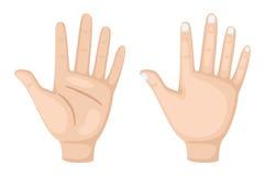 χέρι δύο Στοκ φωτογραφία με δικαίωμα ελεύθερης χρήσης