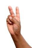 χέρι 12 Στοκ Εικόνες