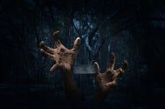 Χέρι Zombie που αυξάνεται έξω από το έδαφος με το σταυρό πέρα από το απόκοσμο δάσος Στοκ εικόνες με δικαίωμα ελεύθερης χρήσης