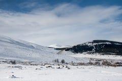 Χέρσα περιοχή χιονιού Στοκ Εικόνες