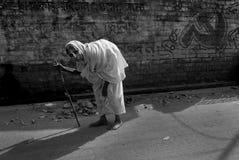 χήρα της Ινδίας Στοκ Εικόνα
