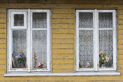Χήρες στο ξύλινο κτήριο Στοκ εικόνες με δικαίωμα ελεύθερης χρήσης