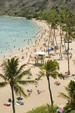 Χαβάη Στοκ εικόνα με δικαίωμα ελεύθερης χρήσης
