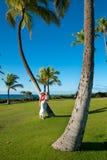 Χαβάη oahu Στοκ Φωτογραφίες