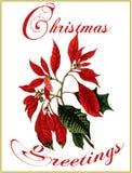 χαιρετισμοί Χριστουγένν&o Στοκ φωτογραφία με δικαίωμα ελεύθερης χρήσης