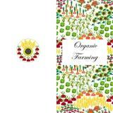 Χαιρετισμός ή επαγγελματική κάρτα γεωργίας Υπόβαθρο τομέων Τοπίο καλλιέργειας κινούμενων σχεδίων Στοκ Φωτογραφίες