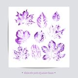 χαιρετισμός καλή χρονιά καρτών του 2007 Κινούμενα σχέδια που τίθενται με τα φύλλα, διανυσματικό σύνολο Στοκ Φωτογραφία