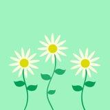 χαιρετισμός λουλουδιών καρτών Στοκ Φωτογραφία