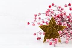 χαιρετισμός Χριστουγέννων καρτών Ο κλάδος χριστουγεννιάτικων δέντρων ακτινοβολεί επάνω χρυσός στοκ εικόνες με δικαίωμα ελεύθερης χρήσης