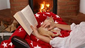 Χαλάρωση περιόδου διακοπών Ανάγνωση ενός βιβλίου και προσοχή της πυρκαγιάς απόθεμα βίντεο