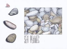Χαλίκια θάλασσας σκίτσο απεικόνιση αποθεμάτων
