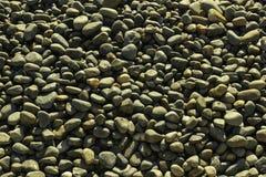 Χαλίκια σε μια παραλία στοκ εικόνα