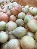 Χαλαρά κρεμμύδια σε ένα κατάστημα Veg Στοκ Εικόνες