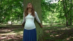 Χαλαρωμένη έγκυος γυναίκα που στέκεται αδύνατη στο μεγάλο κορμό δέντρων στο πάρκο απόθεμα βίντεο