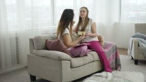 Χαλαρωμένος ελεύθερος χρόνος φίλων επικοινωνίας κοριτσιών μελέτης απόθεμα βίντεο
