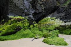 Χαλαρώνοντας πρόσωπο βράχου Στοκ Εικόνες