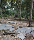 Χαλασμένος δρόμος ασφάλτου σε αγροτικό της Ταϊλάνδης μετά από την πλημμύρα Συνέπειες της πλημμύρας στοκ εικόνες με δικαίωμα ελεύθερης χρήσης