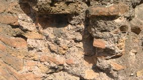 Χαλασμένος τοίχος κοντά επάνω απόθεμα βίντεο