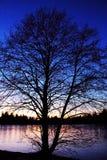 Χαμένη λιμνοθάλασσα - σκιαγραφία Στοκ φωτογραφία με δικαίωμα ελεύθερης χρήσης
