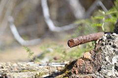 Χαμένος σίδηρος Στοκ φωτογραφία με δικαίωμα ελεύθερης χρήσης