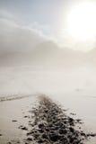 Χαμένος στο λευκό Στοκ εικόνα με δικαίωμα ελεύθερης χρήσης