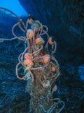 Χαμένο δίχτυ του ψαρέματος Στοκ Εικόνες