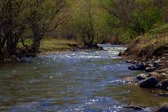 Χαμηλές πετρώδεις όχθεις του ποταμού Wajan βουνών Altai, Σιβηρία, Ρωσία o στοκ εικόνες
