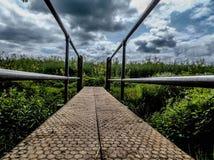 Χαμηλή γέφυρα ματιών στοκ εικόνα με δικαίωμα ελεύθερης χρήσης