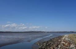 Χαμηλή παλίρροια σε μια παλιρροιακή λεκάνη Στοκ Εικόνες