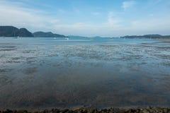 Χαμηλή παλίρροια στην παραλία Langkawi στοκ φωτογραφία