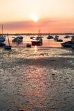 χαμηλή παλίρροια Στοκ Φωτογραφίες