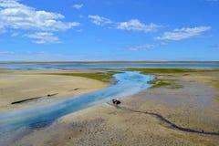 Χαμηλή παλίρροια Στοκ εικόνα με δικαίωμα ελεύθερης χρήσης
