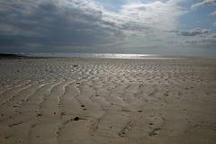 Χαμηλή παλίρροια zanzibar Στοκ Εικόνες