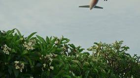 Χαμηλός οι μύγες αεροπλάνων απόθεμα βίντεο