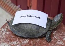 Χαμηλό Διαδίκτυο Ένα κακό σύμβολο Διαδικτύου Χαμηλός μεταφορτώστε την ταχύτητα Διαδίκτυο αργό Ο συνηθισμένος ποταμός των συγκρατη Στοκ Φωτογραφίες