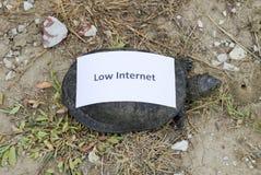 Χαμηλό Διαδίκτυο Ένα κακό σύμβολο Διαδικτύου Χαμηλός μεταφορτώστε την ταχύτητα Διαδίκτυο αργό Ο συνηθισμένος ποταμός των συγκρατη Στοκ Εικόνες