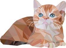 Χαμηλό πολυ κόκκινο γατάκι στο άσπρο υπόβαθρο Στοκ Φωτογραφίες