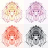 Χαμηλά πολυ ευθυγραμμισμένα λιοντάρια καθορισμένα Στοκ φωτογραφίες με δικαίωμα ελεύθερης χρήσης