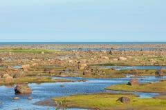 Χαμηλές καναδόχηνες παλίρροιας και Στοκ Φωτογραφίες