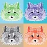 Χαμηλές πολυ ευθυγραμμισμένες αλεπούδες καθορισμένες Στοκ φωτογραφίες με δικαίωμα ελεύθερης χρήσης