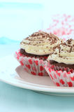 Χαμηλής περιεκτικότητας σε λιπαρά σοκολάτα cupcakes Στοκ φωτογραφία με δικαίωμα ελεύθερης χρήσης
